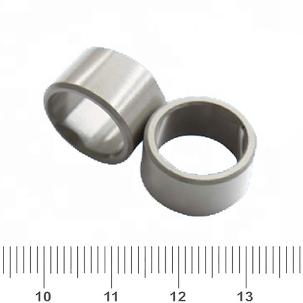 BNP-11 Diametrically Magnetized Radial Ring Magnet For DC Motor