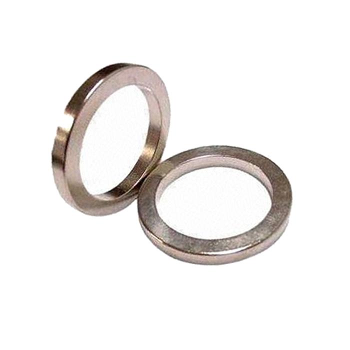 Ring Radial Magnetized Magnet Sintered NdFeB