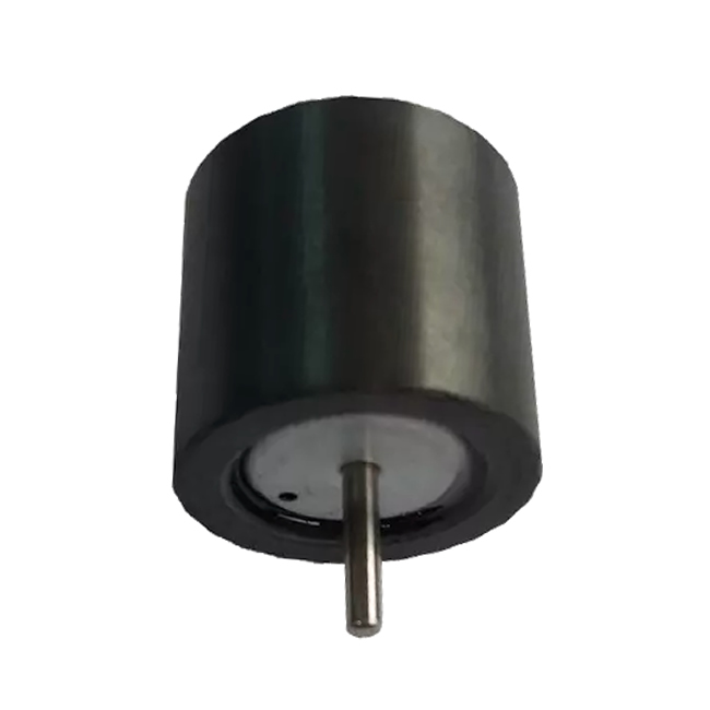Isotropic Multipole Ring Sintering Ferrite Magnet Assembly