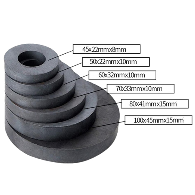Multipole Anisotropic Ferrite Ring Permanent Magnets