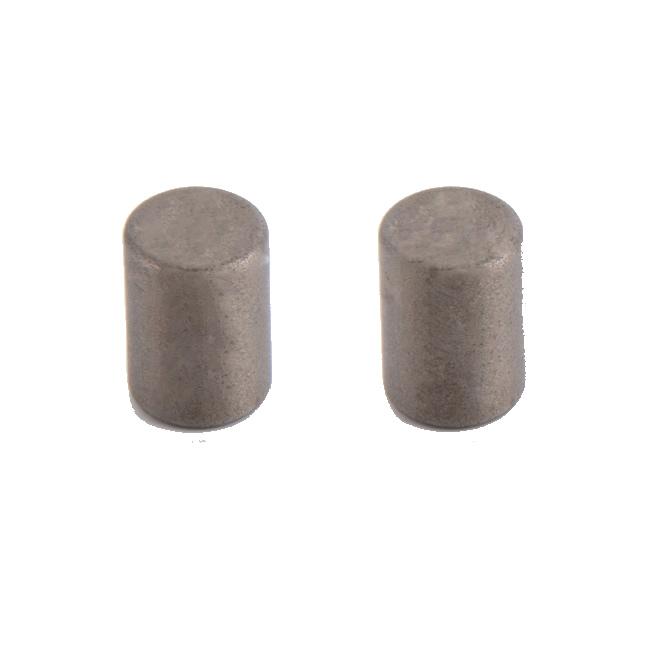 Rare Earth Samarium and Cobalt Cylinder Permanent Magnet D6xH10mm
