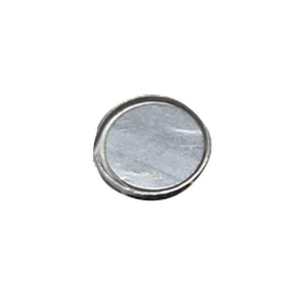 Permanent Neodymium Monopole Magnet Wholesale Price